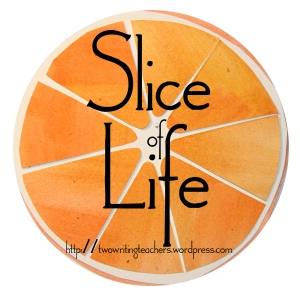 Slice Daily for the Entire Month of March