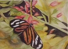 Wings of ___________________ (Hope, Change, Endurance, Life, Resurrection)